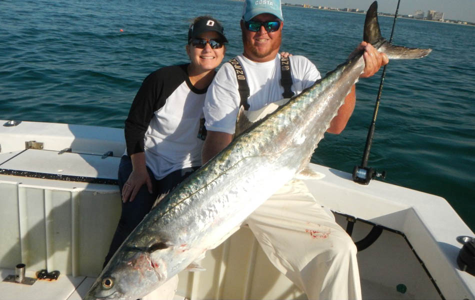 Tournament winning King Mackerel in St. Petersburg, FL fishing tournament.